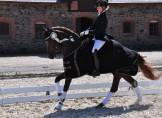 Sophienhofs Mackay vinder Aarhusmesterskaberne